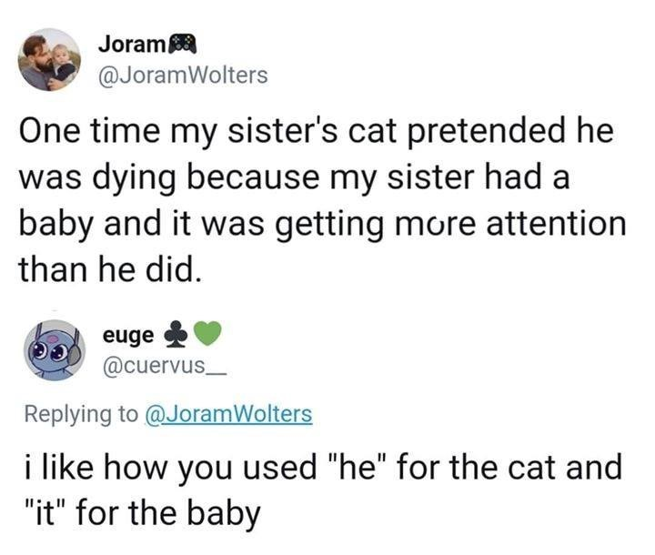 one time my sister's cat pretended he was dying because my sister had a baby and it was getting more attention than he did. i like how you used he for the cat and it for the baby.