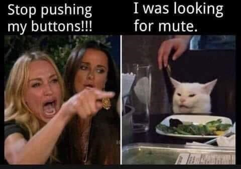 woman yelling at a cat meme stop pushing my buttons! i was looking for mute