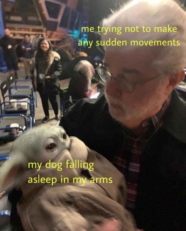 Photo caption - me trying not to make any sudden movements my dog falling asleep in my arms