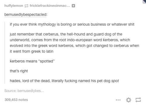 """Text - huffylemon E fricklefrackineoinma. bemusedlybespectacled: if you ever think mythology is boring or serious business or whatever shit Just remember that cerberus, the hell-hound and guard dog of the underworld, comes from the root indo-european word kerberos, which evolved into the greek word kerberos, which got changed to cerberus when It went from greek to latin kerberos means """"spotted"""" that's right hades, lord of the dead, literally fucking named his pet dog spot Source: bemusedlybes. 3"""