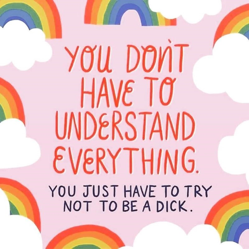 Rainbow - YOU DONT HAVE TO UNDERSTAND EVERYTHING. YOU JUST HAVE TO TRY NOT TO BE A DICK.