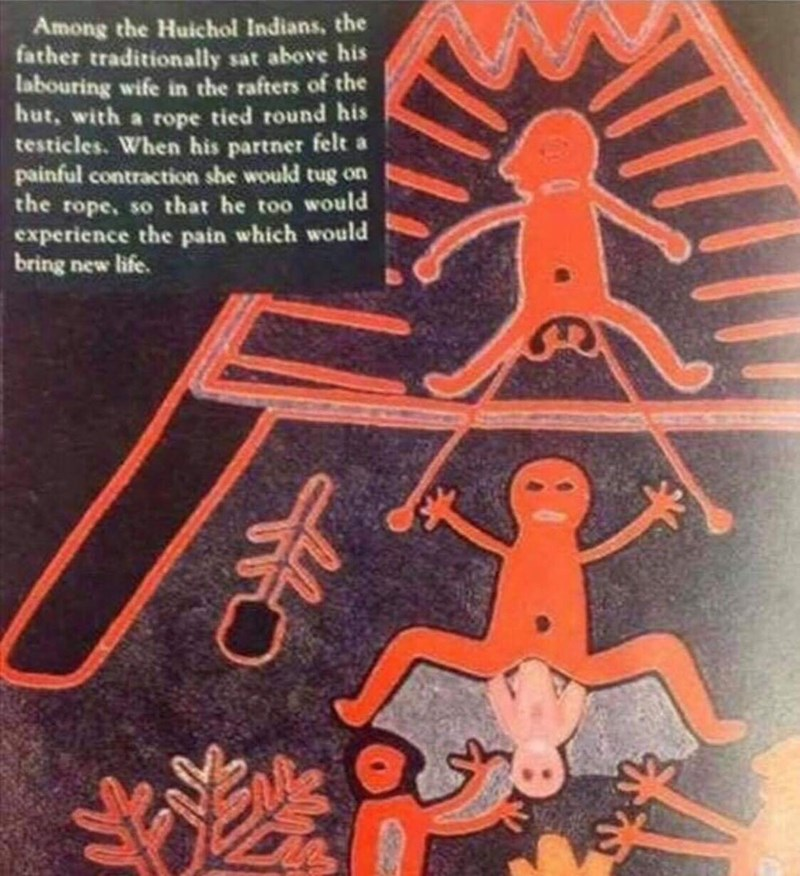 Organism - Among the Huichol Indians, the father traditionally sat above his labouring wife in the rafters of the hut, with a rope tied round his testicles. When his partner felt a painful contraction she would tug on the rope, so that he too would experience the pain which would bring new life.