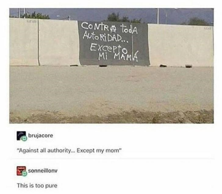 "Text - CONTRA todA Auto RIDAD... EXcerto. Mi MAMA brujacore ""Against all authority... Except my mom"" sonneillonv This is too pure"