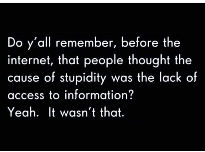 Text - Do y'all remember, before the internet, that people thought the cause of stupidity was the lack of access to information? Yeah. It wasn't that.