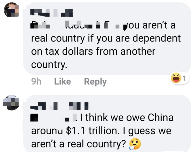 Text - uuL if . you aren't a real country if you are dependent on tax dollars from another country. 9h Reply Like I think we owe China arounu $1.1 trillion. I guess we aren't a real country? 9
