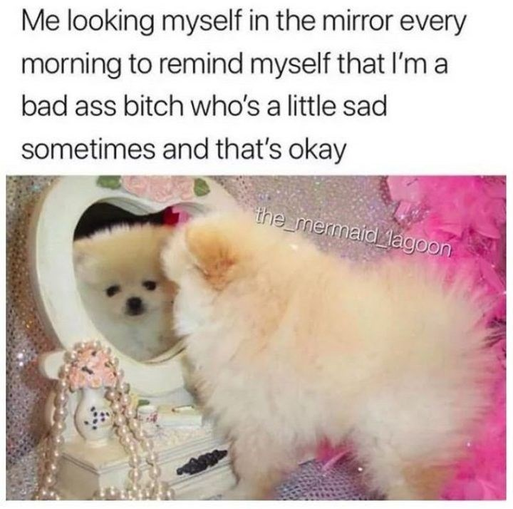 Dog - Me looking myself in the mirror every morning to remind myself that I'm a bad ass bitch who's a little sad sometimes and that's okay the mermaid lagoon