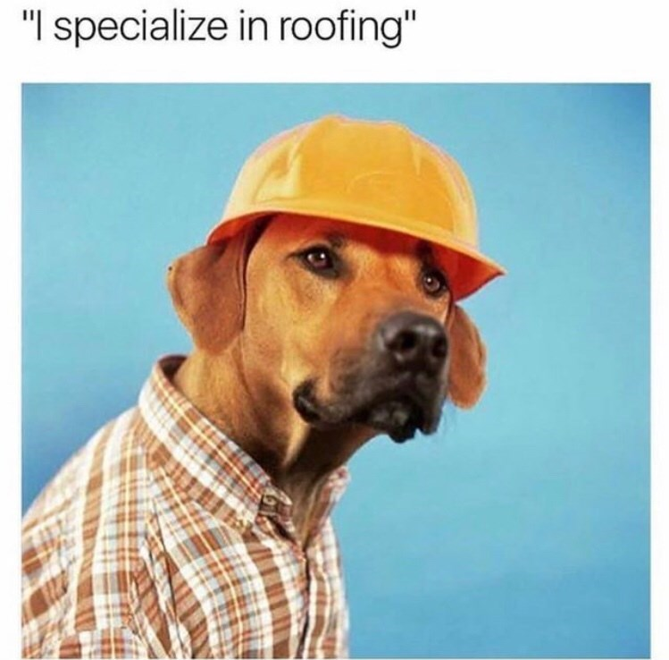 "Text - Dog - ""I specialize in roofing"""