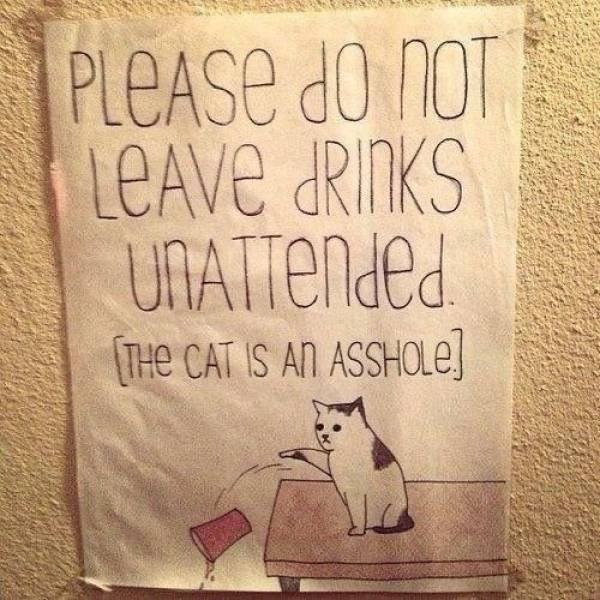 please don't leave drinks unattended the cat is an asshole. drawing of a cat sitting on a table and pushing a cup off of it