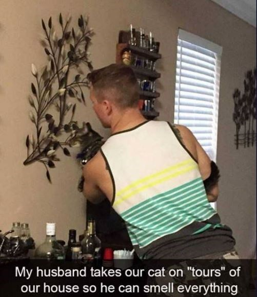 "Shoulder - My husband takes our cat on ""tours"" of our house so he can smell everything"