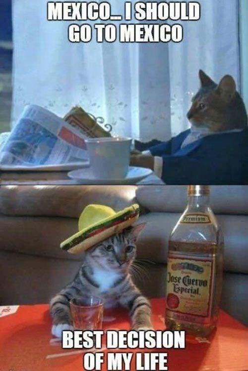 Photo caption - MEXICOISHOULD GO TO MEXICO Frmiim Jose Cuervo Esperial BEST DECISION OF MY LIFE