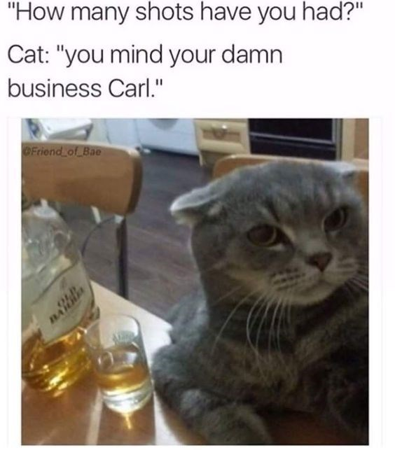 """Cat - """"How many shots have you had?"""" Cat: """"you mind your damn business Carl."""" OFriend of Bae nAlHA"""