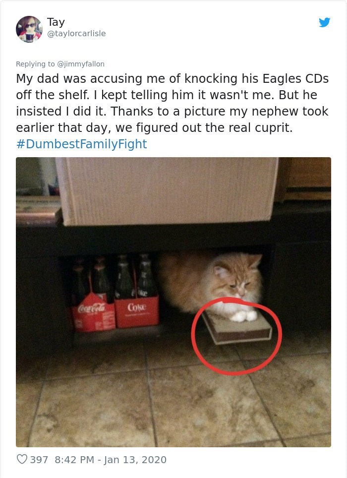 Text - Product - Tay @taylorcarlisle Replying to @jimmyfallon My dad was accusing me of knocking his Eagles CDs off the shelf. I kept telling him it wasn't me. But he insisted I did it. Thanks to a picture my nephew took earlier that day, we figured out the real cuprit. #DumbestFamilyFight CocaCola Coke O 397 8:42 PM - Jan 13, 2020