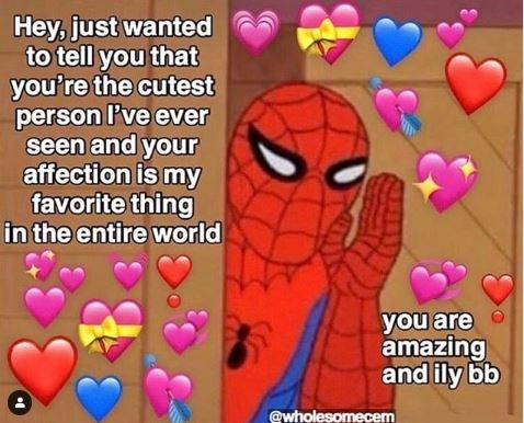 Text - Hey, just wanted to tell you that you're the cutest person l've ever seen and your affection is my favorite thing in the entire world you are amazing and ily bb @wholesomecem