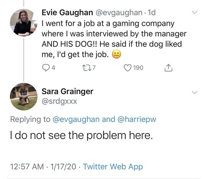 Text - Evie Gaughan @evgaughan - 1d I went for a job at a gaming company where I was interviewed by the manager AND HIS DOG!! He said if the dog liked me, l'd get the job. 9 94 277 190 Sara Grainger @srdgxxx Replying to @evgaughan and @harriepw I do not see the problem here. 12:57 AM · 1/17/20 · Twitter Web App