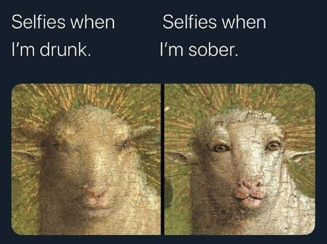 Sheep - Selfies when Selfies when I'm drunk. I'm sober.