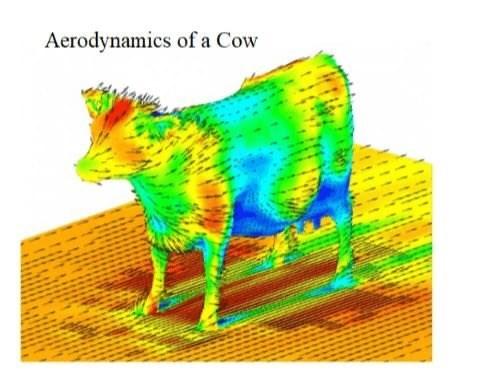 Green - Aerodynamics of a Cow