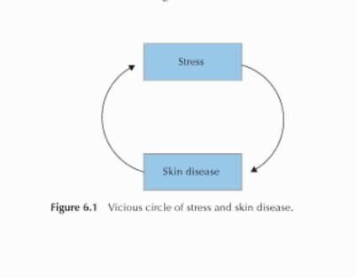 Text - Stress Skin disease Figure 6.1 Vicious circle of stress and skin disease.