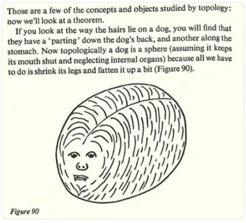 Line art - Those are a few of the concepts and objects studied by topology: now we'll look at a theorem. If you look at the way the hairs lie on a dog, you will find that they have a 'parting' down the dog's back, and another along the stomach. Now topologically a dog is a sphere (assuming it keeps its mouth shut and neglecting internal organs) because all we have to do is shrink its legs and fatten it up a bit (Figure 90). Figure 90