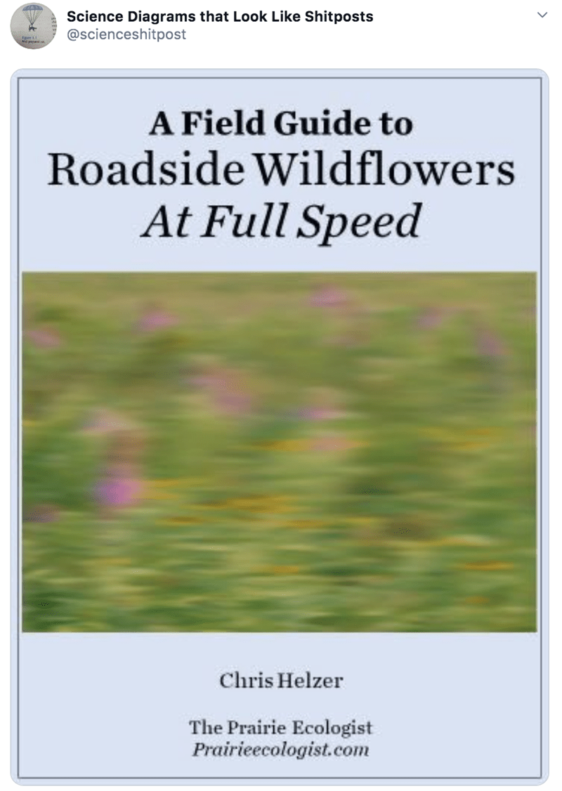 Text - Science Diagrams that Look Like Shitposts @scienceshitpost A Field Guide to Roadside Wildflowers At Full Speed Chris Helzer The Prairie Ecologist Prairieecologist.com