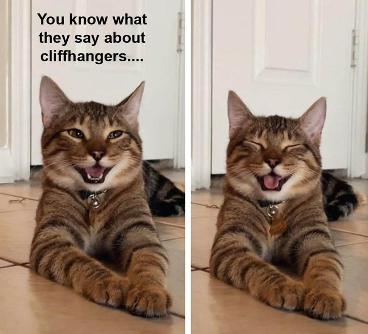 Cat - You know what they say about cliffhangers...