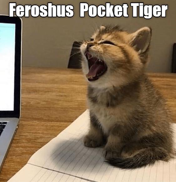 Cat - Feroshus Pocket Tiger