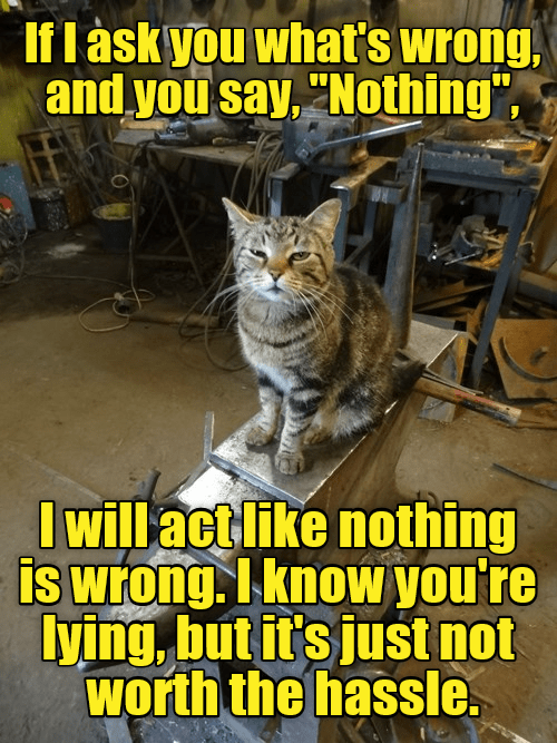 "Cat - If l àsk you what's wrong, and you say, ""Nothing"", I will actlike nothing is wrong. I know you're lying, but it's just not worth the hassle."