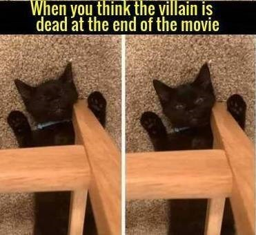 Black cat - When you think the villain is dead at the end of the movie