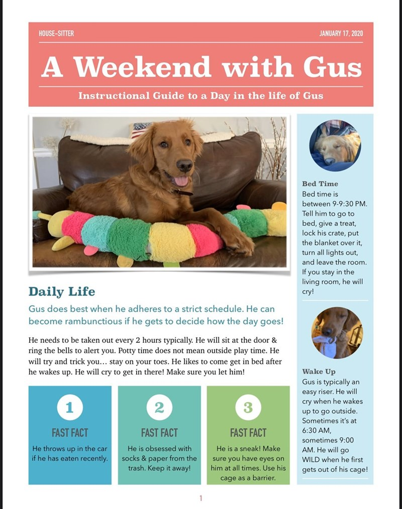 Dog breed - HOUSE-SITTER JANUARY 17, 2020 A Weekend with Gus A Instructional Guide to a Day in the life of Gus Bed Time Bed time is between 9-9:30 PM. Tell him to go to bed, give a treat, lock his crate, put the blanket over it, turn all lights out, and leave the room. If you stay in the living room, he will cry! Daily Life Gus does best when he adheres to a strict schedule. He can become rambunctious if he gets to decide how the day goes! He needs to be taken out every 2 hours typically. He wil