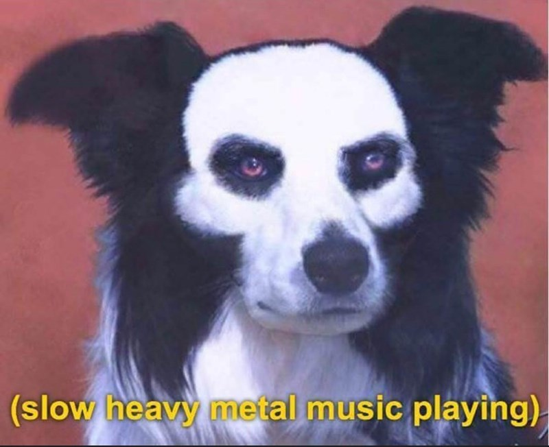 Vertebrate - (slow heavy metal music playing)