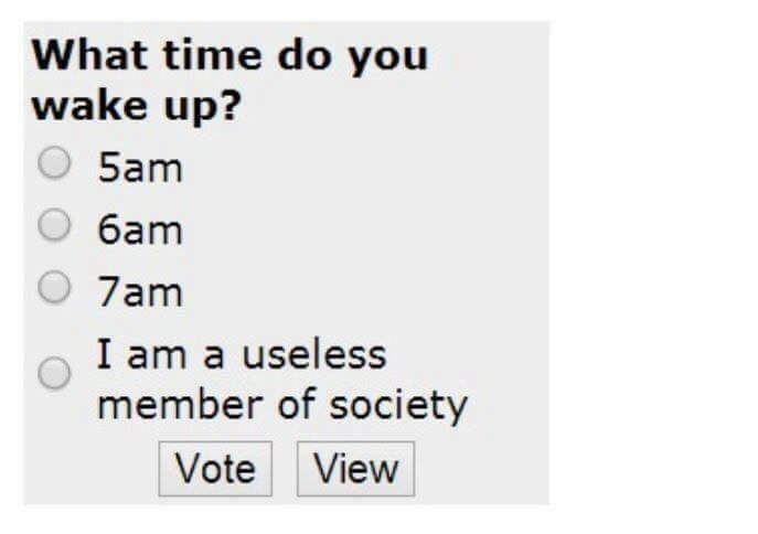 Text - What time do you wake up? 5am 6am O 7am I am a useless member of society Vote View