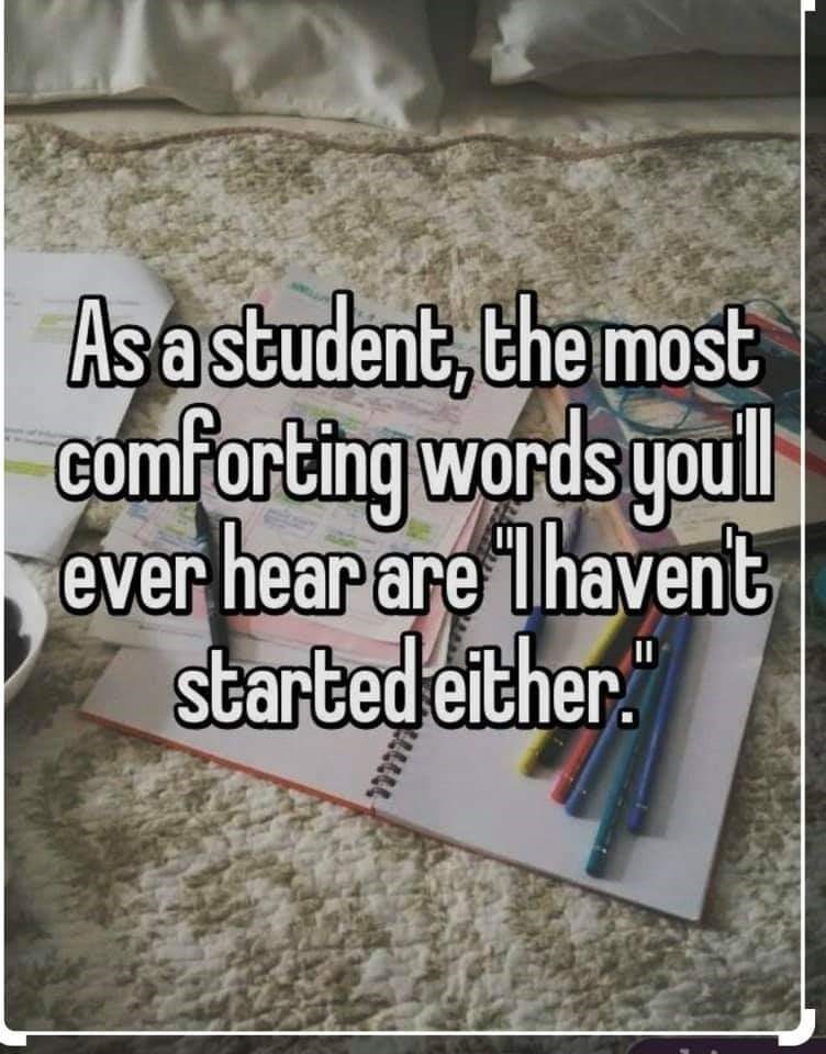 """Text - Asa student, the most comforting words youll ever hear are lhavent started either."""""""