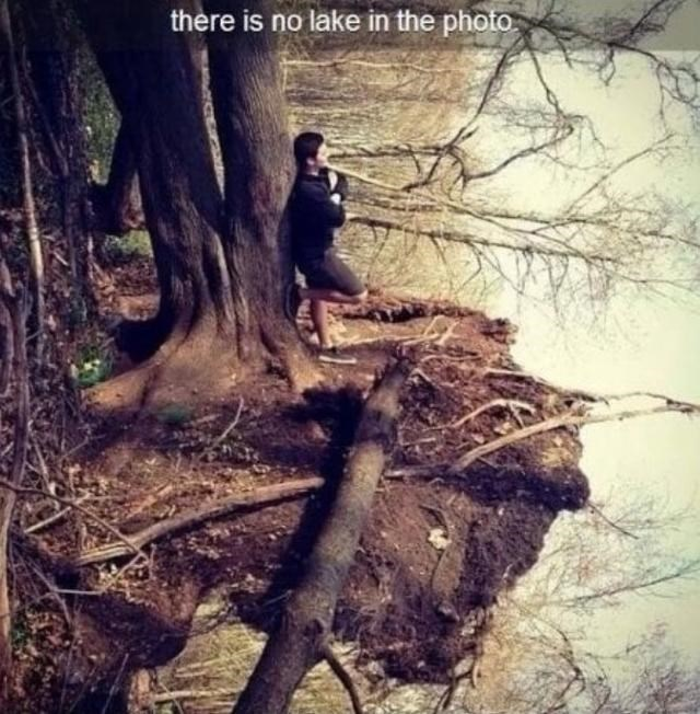 Tree - there is no lake in the photo.