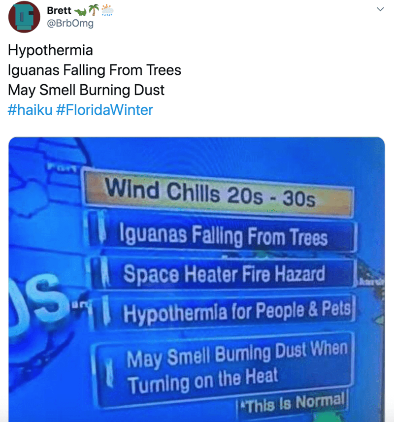 Text - Brett T: @BrbOmg Hypothermia Iguanas Falling From Trees May Smell Burning Dust #haiku #FloridaWinter Wind Chlls 20s - 30s Iguanas Falling From Trees Space Heater Fire Hazard Hypothermia for People& Pets May Smell Buming Dust When Tuming on the Heat This Is Normal