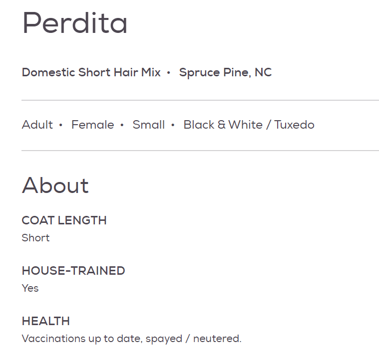 Text - Perdita Domestic Short Hair Mix • Spruce Pine, NC Adult • Female • Small • Black & White / Tuxedo About COAT LENGTH Short HOUSE-TRAINED Yes HEALTH Vaccinations up to date, spayed / neutered.