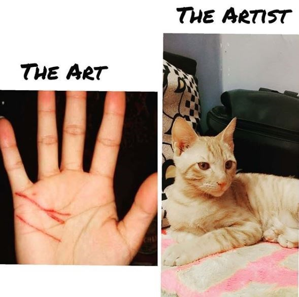 Cat - THE ARTIST THE ART CHU