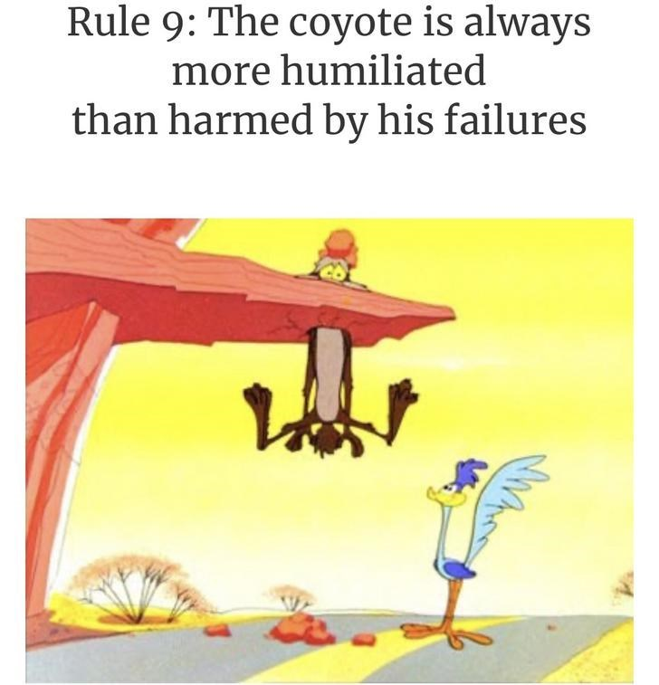 Text - Rule 9: The coyote is always more humiliated than harmed by his failures