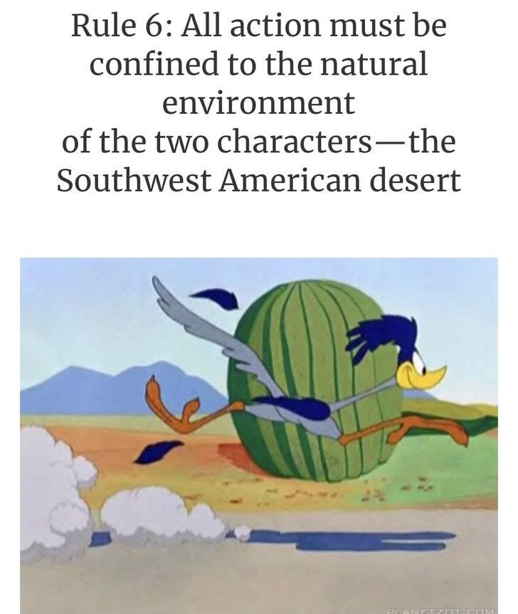 Text - Rule 6: All action must be confined to the natural environment of the two characters-the Southwest American desert BLANE