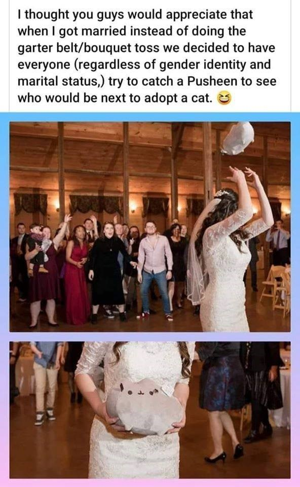 bride throwing a stuffed cat over her head at a crowd: i thought you guys would appreciate that when i got married instead of doing the garter belt / bouquet toss we decided to have everyone (regardless of gender identity and marital status) try to catch a pusheen to see who would be next to adopt a cat