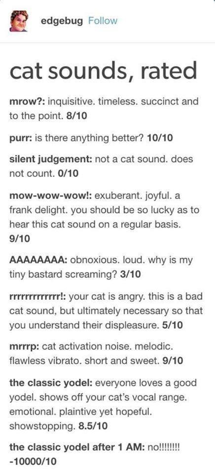 cat sounds rated mrow inquisitive timeless succinct purr anything better silent judgement not a cat sound does not count mow wow wow exuberant aaaaaa rrrrrr mrrp the classic yodel the classic yodel after 1 am
