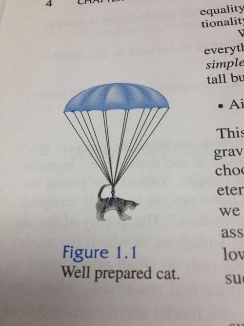 illustration of cat parachuting figure 1 well prepared cat