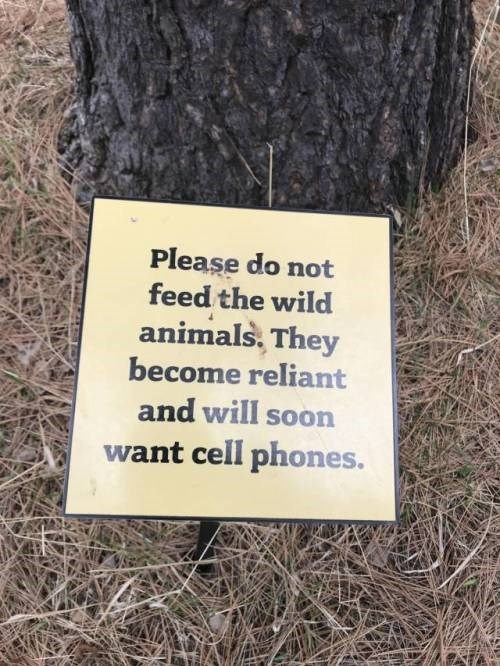 Text - Please do not feed the wild animals, They become reliant and will soon want cell phones.
