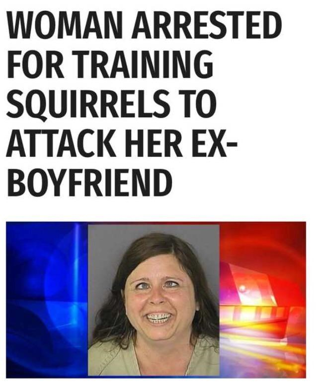 Text - WOMAN ARRESTED FOR TRAINING SQUIRRELS TO ATTACK HER EX- BOYFRIEND