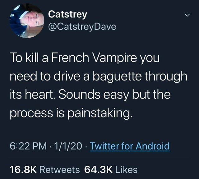 Text - Catstrey @CatstreyDave To kill a French Vampire you need to drive a baguette through its heart. Sounds easy but the process is painstaking. 6:22 PM - 1/1/20 Twitter for Android 16.8K Retweets 64.3K Likes