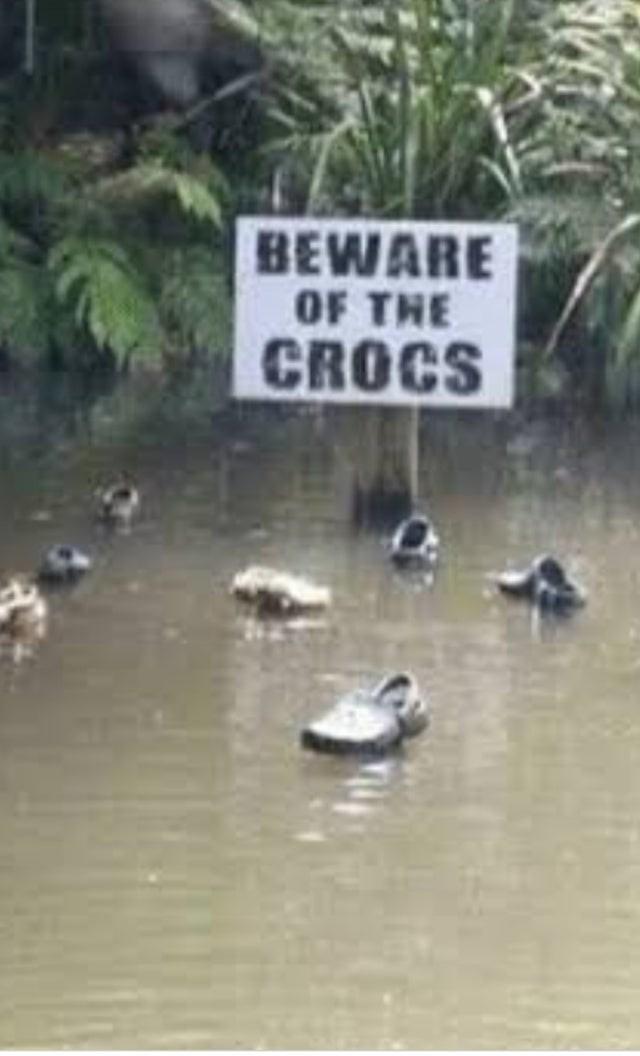 Duck - BEWARE OF THE CROCS