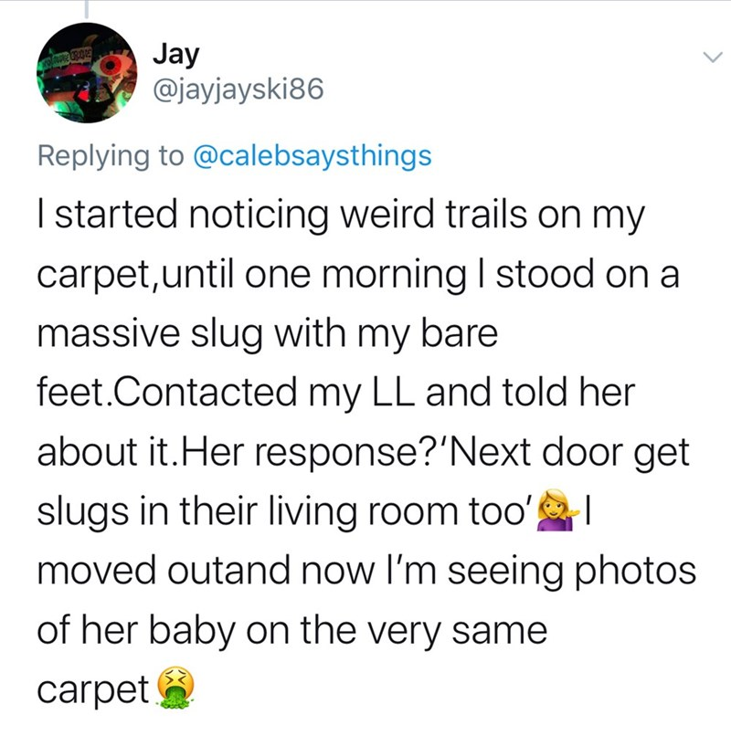 Text - Jay @jayjayski86 Replying to @calebsaysthings I started noticing weird trails on my carpet,until one morning I stood on a massive slug with my bare feet.Contacted my LL and told her about it.Her response?'Next door get slugs in their living room too' moved outand now l'm seeing photos of her baby on the very same carpet