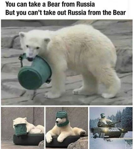 Polar bear - You can take a Bear from Russia But you can't take out Russia from the Bear