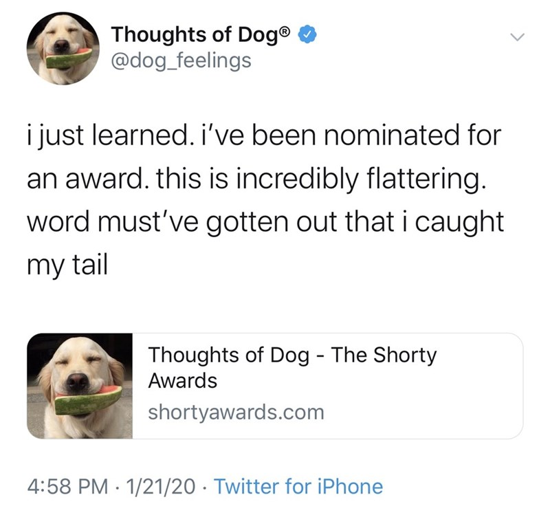 Text - Thoughts of Dog® O @dog_feelings i just learned. i've been nominated for an award. this is incredibly flattering. word must've gotten out that i caught my tail Thoughts of Dog - The Shorty Awards shortyawards.com 4:58 PM · 1/21/20 · Twitter for iPhone
