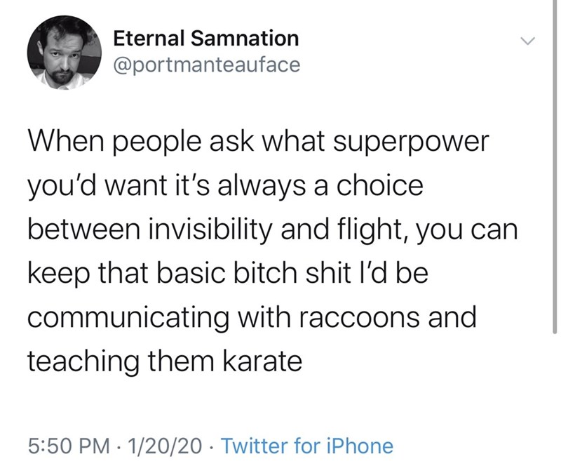 Text - Eternal Samnation @portmanteauface When people ask what superpower you'd want it's always a choice between invisibility and flight, you can keep that basic bitch shit l'd be communicating with raccoons and teaching them karate 5:50 PM · 1/20/20 · Twitter for iPhone