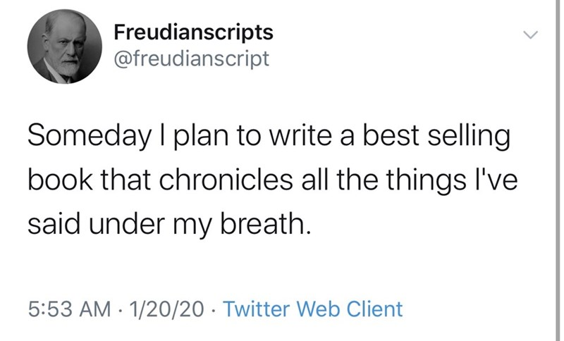 Text - Freudianscripts @freudianscript Someday I plan to write a best selling book that chronicles all the things I've said under my breath. 5:53 AM · 1/20/20 · Twitter Web Client
