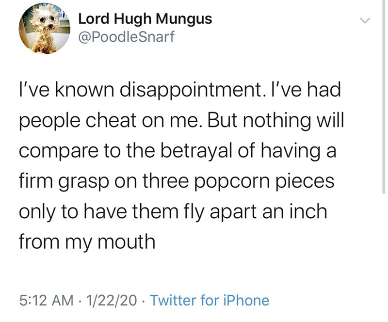 Text - Lord Hugh Mungus @PoodleSnarf I've known disappointment. I've had people cheat on me. But nothing will compare to the betrayal of having a firm grasp on three popcorn pieces only to have them fly apart an inch from my mouth 5:12 AM · 1/22/20 · Twitter for iPhone
